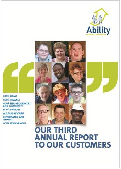 Cover of Customer Annual report 2012